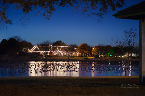 park lake reflection texas nightlights christmaslights moonlight canadiangeese nightscapes lubbock nightlandscape