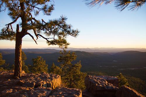 sunset arizona forest canon landscape az mogollonrim ponderosapines 550d efs1755mmf28isusm leefilters t2i onearthnrdc lifelover4 stickneydesign