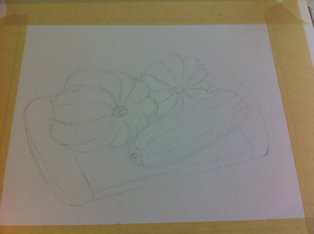 Gourds in progress - pencil sketch