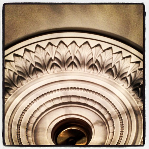 #FMSphotoaday December 5 - Looking up