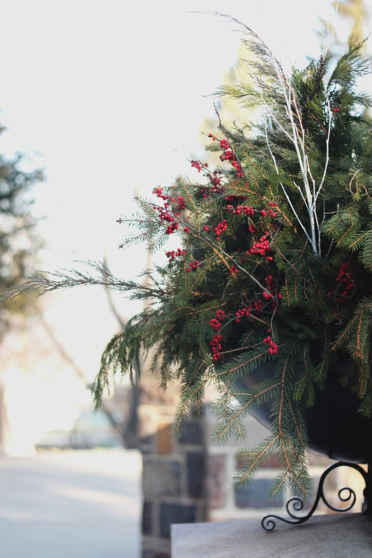 Dec 13: A Winter Arrangement