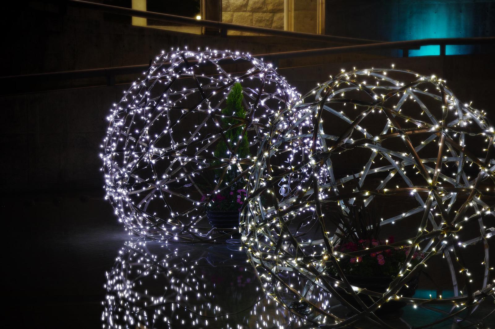 光と花のページェント2012