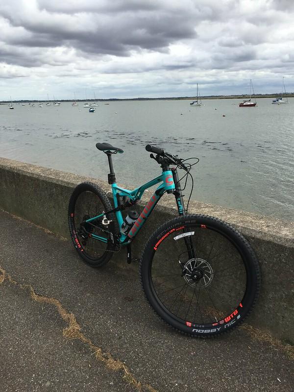 Not a Bad Habit... New bike...