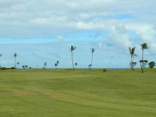 Kauai Lagoon Golf Club 401b