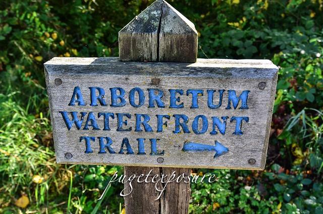 Arboretum Waterfront Trail