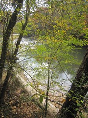 29. The Chunky River from the Hiking Trail
