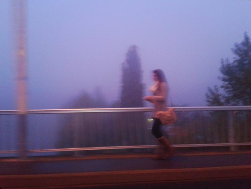 Mirabeau dans la brume II
