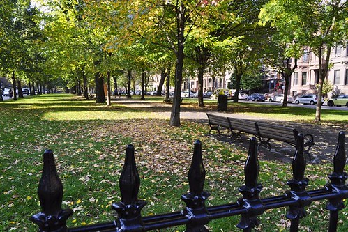 Commonwealth Avenue Mall: Fence