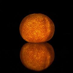 Orange Season [319/366]