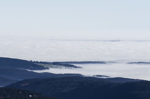 Sea of fog Feldberg