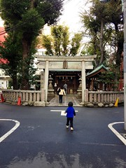 朝散歩 (2012/11/13)