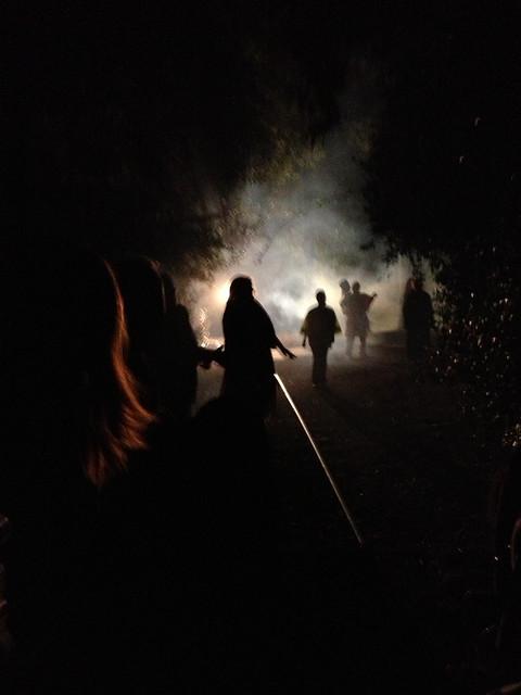 More Walking Dead