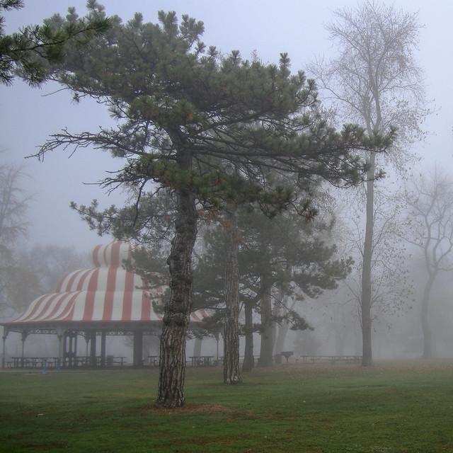fog-05