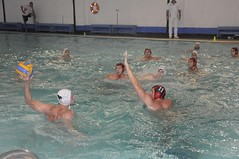 swimming(0.0), outdoor recreation(0.0), swimmer(0.0), water & ball sports(1.0), water polo(1.0), sports(1.0), recreation(1.0), leisure(1.0), team sport(1.0), water sport(1.0), ball game(1.0),