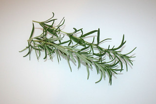 09 - Zutat Rosmarin / Ingredient rosemary