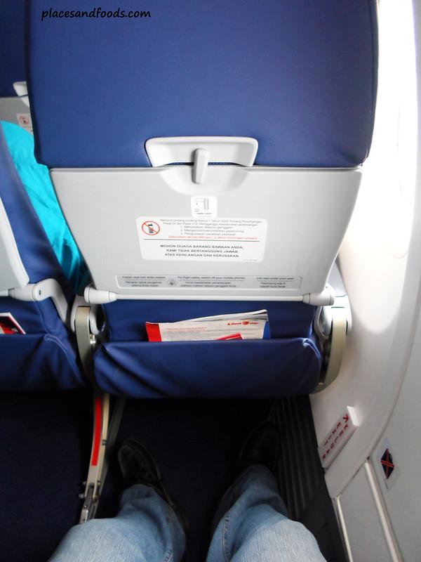 lion airways seat