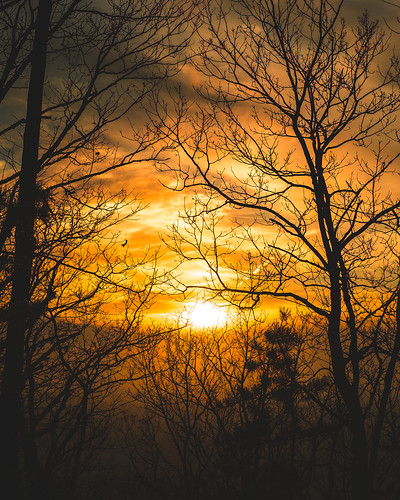 trees sunset sky sun nature colors silhouette clouds forest photography woods fujifilm xpro1 colingallagher