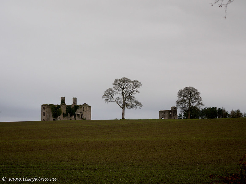 Rathcoffey castle