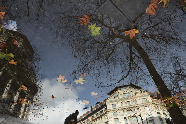 Reflection on Autumn - 35 Fantastic Color Street Photographs