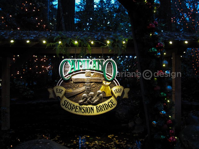 Capilano Suspension Bridge Canyon Lights-1