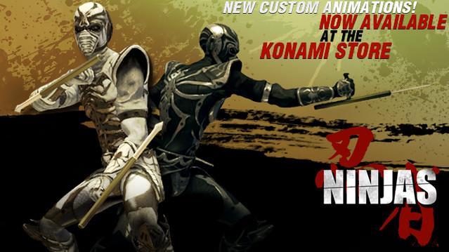 Ninja2_684x384.jpg