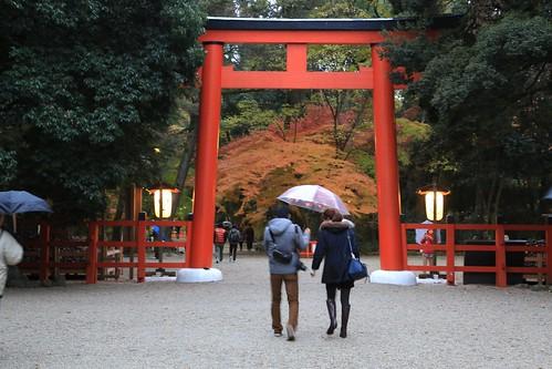 Autumn SHIMOGAMO-JINJA 下鴨神社
