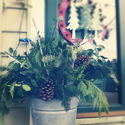 bucket of greens on the front stoop #deckthehalls #yule