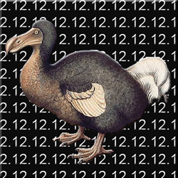 2012.12.12 Dodo