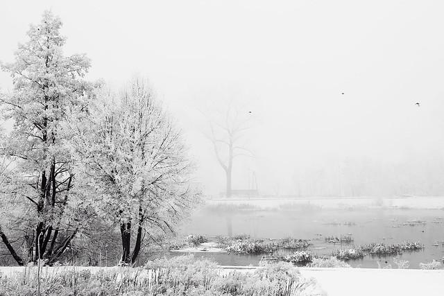 Zimowy Kalisz