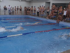 swimming pool(1.0), individual sports(1.0), leisure centre(1.0), swimming(1.0), sports(1.0), recreation(1.0), outdoor recreation(1.0), leisure(1.0), swimmer(1.0), water sport(1.0), freestyle swimming(1.0),