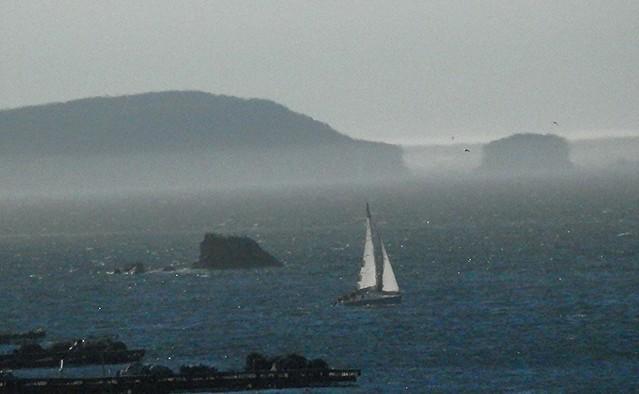 Niebla cambiando el paisaje