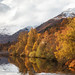 Affric Autumn by KennethVerburg.nl