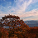 Blue Ridge Parkway 2011-1008-2 by LostPineJim