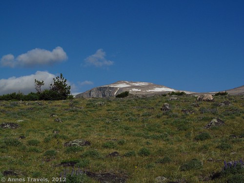 Mount Rearguard peaks up over the tundra, Hellroaring Plateau, Custer National Forest, Montana