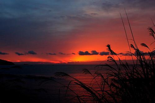 sunset sea japan canon sunrises x5 神奈川県 湯河原 600d japanlandscape japanpictures 18mm55mm efs1855mmf3556isii rebelt3i600d japansunsetandsunrise 日本神奈川県湯河原 japantouristphotos