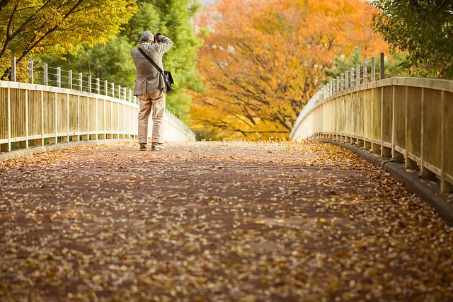 20121112_01_秋を撮る人