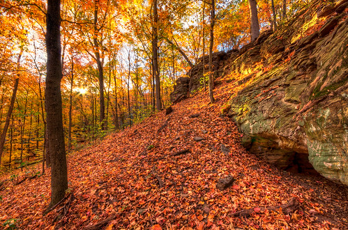 """park autumn trees sunset red usa sun fall nature topf25 leaves topv111 rock stone wisconsin forest landscape photography gold golden maple amazing oak woods topf50 topv555 topv333 october flickr glow natural state image pentax hiking walk hill topv444 award sigma exhibition topv222 photograph cadiz 1020mm ppg hdr 2012 k5 thelook masterclass browntown photomatix amazingnature """"flickr gallery"""" sigma1020mmf456exdc flickraward pentaxphotogallery pentaxphotogallerycom kohlbauer """"flickraward"""" flickraward5 mygearandme mygearandmepremium mygearandmebronze mygearandmesilver mygearandmegold mygearandmeplatinum flickrawardgallery cadizsprings browntownoakforest hardpancom marckohlbauer"""