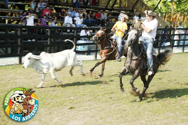 Imagen del Show de Vaqueria en el Parque los Arrieros