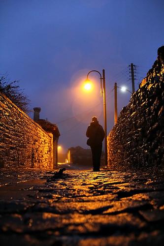 βραδυνή παπιγκο βόλταvatzik