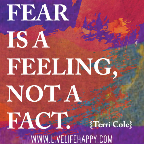 Fear is a feeling, not a fact. - Terri Cole