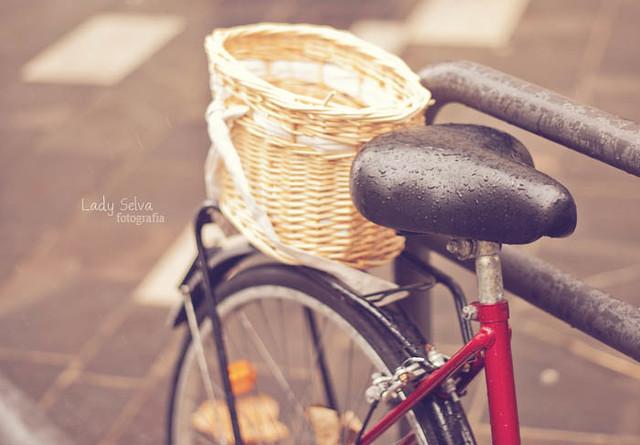 Quiero una bici con cestita!