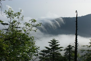 Sea cloud in Emei Shan valley