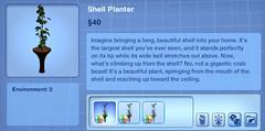 Shell Planter