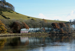 Steam on the Looe Branch