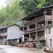 village de Tong Mu, berceau du thé noir Jin Jun Mei