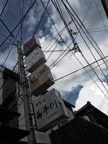 2012.11.23(R0010556_Dark Contrast