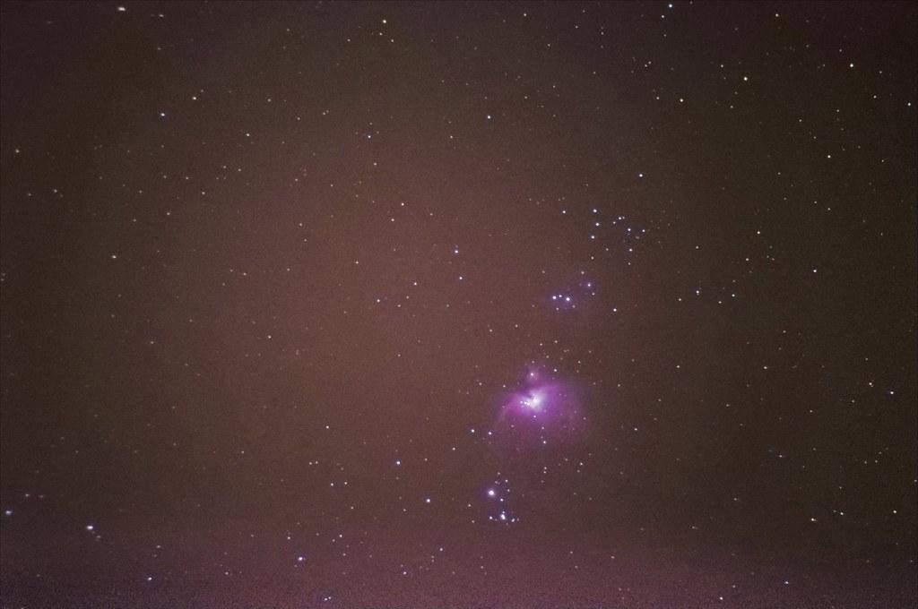 M42之小火鳥