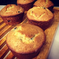 Blueberry muffins on a chilly morning.