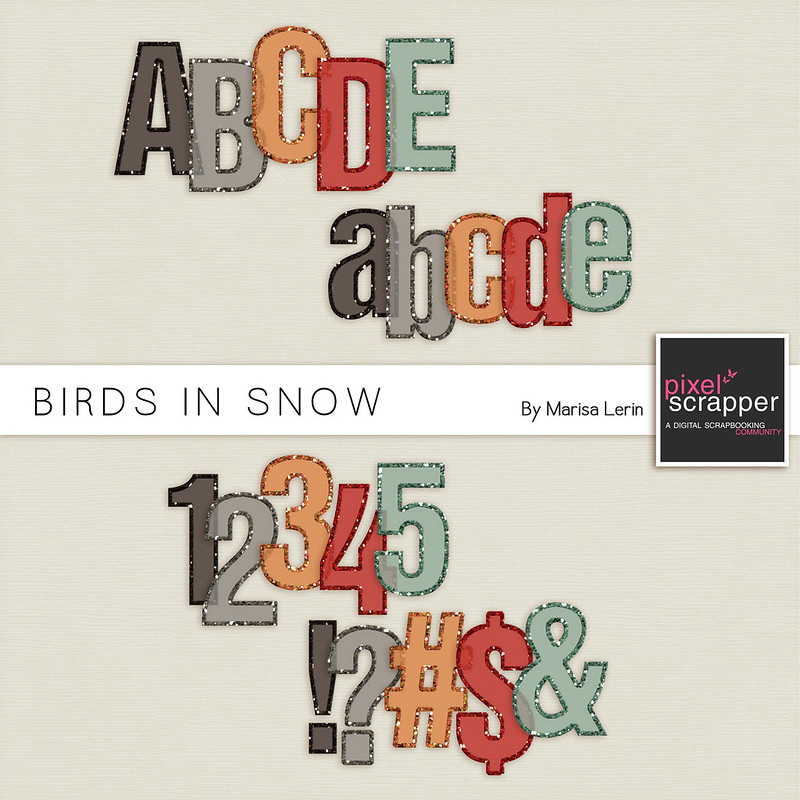 Birds in Snow Alpha Kit