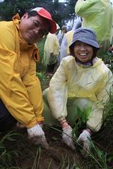 每棵茶樹,都是志工們對地球的一種祝福。
